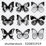 Stock vector vector butterflies isolated on transparent checkered background 520851919