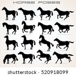Vector Horse Icons. Different...
