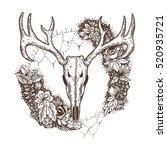 stylized deer skull and flowers ... | Shutterstock .eps vector #520935721
