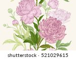 peonies seamless floral pattern.... | Shutterstock .eps vector #521029615
