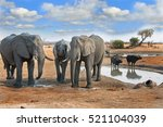 Elephants next to a waterhole with two cape buffalo in the background with a blue cloudy sky in Hwange National Park, Zimbabwe, Southern Africa