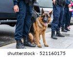 brown police dog german... | Shutterstock . vector #521160175