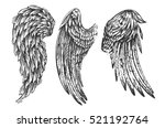 beautiful hand drawn... | Shutterstock .eps vector #521192764