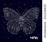 Butterfly Constellation Vector