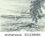 calm sea view etching  an olive ... | Shutterstock .eps vector #521238484