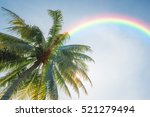 Coconut Tree And Rainbow