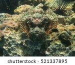 Fish Like A Japanese Mask ...