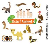 Desert Animals Cartoon On Whit...
