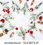 Christmas Decoration. Branch...