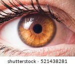 human eye close up detail | Shutterstock . vector #521438281