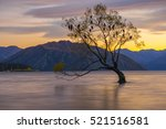 Alone Tree In Wanaka Lake At...