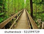 Bridge walkway in Voyageurs National Park