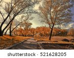 old alley in the park... | Shutterstock . vector #521628205