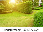 Lawn With Trimmed Bushes On A...