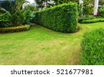 lawn with shrubs trimmed... | Shutterstock . vector #521677981