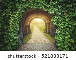 mysterious gate sunny entrance. ... | Shutterstock . vector #521833171