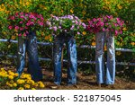 Decorate Beautiful Garden By...
