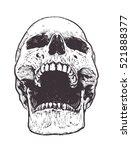 anatomic skull vector art.... | Shutterstock .eps vector #521888377