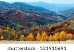 autumn forest and yellow birch... | Shutterstock . vector #521910691