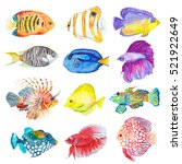 watercolor colorful set fishes. ... | Shutterstock . vector #521922649