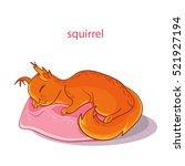 cute sleeping squirrel. sweet... | Shutterstock .eps vector #521927194