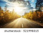 Road In North Forest In Autumn...