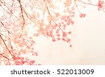 Stock photo soft blurred of sakura flower in the pastel vintage color style for background 522013009
