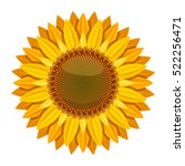 Sunflower Vector Isolated On...