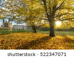 Autumn Scenery In Cambridge....