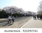 busan   5 apr  gyeonghwa... | Shutterstock . vector #522392761