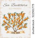 bush sea buckthorn poster....   Shutterstock .eps vector #522501775