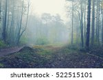 magical foggy seasonal forest... | Shutterstock . vector #522515101