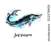 hand drawn watercolor sturgeon. ... | Shutterstock .eps vector #522578905