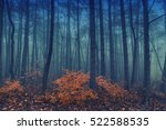 magical foggy seasonal forest... | Shutterstock . vector #522588535