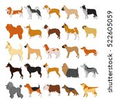 set of dogs breeds in colored ... | Shutterstock .eps vector #522605059