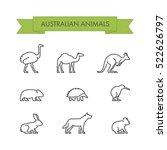 line set of australian animals. ... | Shutterstock . vector #522626797