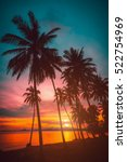 silhouette coconut palm trees... | Shutterstock . vector #522754969