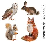 Stock photo set of four forest animals isolated on a white background 522770614