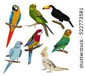 parrots | Shutterstock . vector #522773581