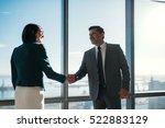 businessman and businesswoman...   Shutterstock . vector #522883129