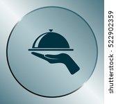 hot proper meal plate vector...   Shutterstock .eps vector #522902359