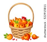 vector basket with colorful... | Shutterstock .eps vector #522915811