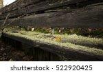 bench at abandoned stadium of... | Shutterstock . vector #522920425