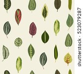 vintage organic leaves. exotic... | Shutterstock .eps vector #523079287