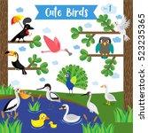 cute birds animal cartoon on...