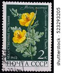 ussr   circa 1972. postage... | Shutterstock . vector #523293205