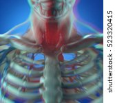 human anatomy  throat cancer ... | Shutterstock . vector #523320415