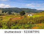nature near san juan chamula ... | Shutterstock . vector #523387591