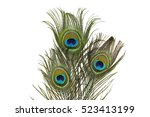 peacock feather on white... | Shutterstock . vector #523413199