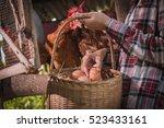 Farmer Woman Gathering Fresh...
